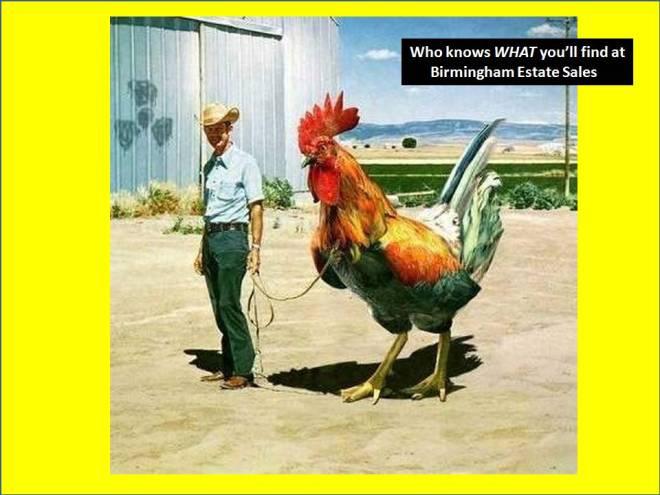 BES chicken big